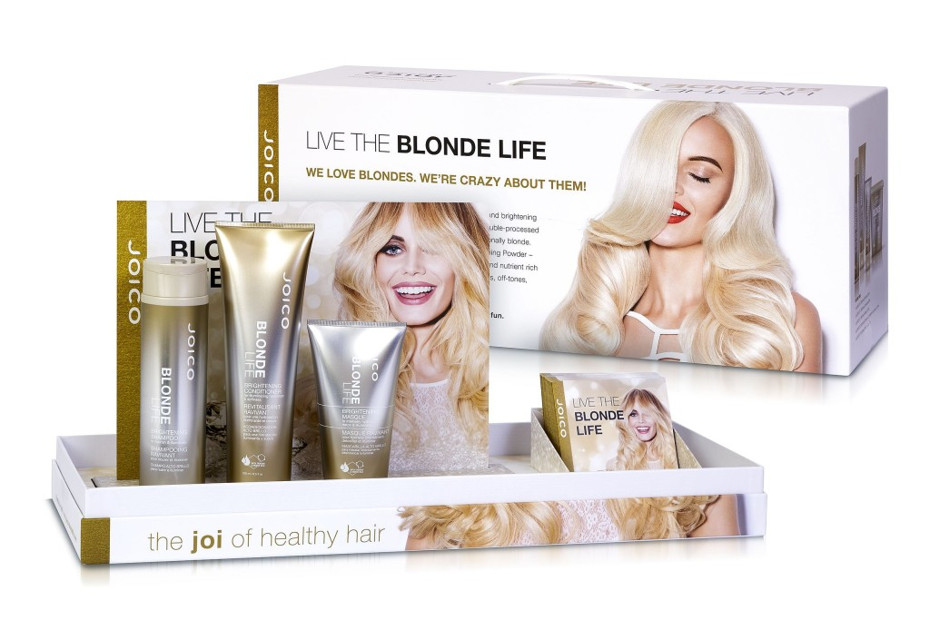 JOICO-Blonde-Life-Presenter-Kit-open-flyers